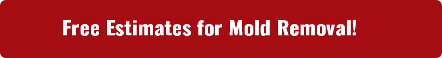 Mold Removal Services Missouri