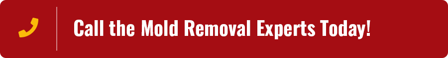 Central MO Mold Removal Services